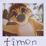 Portroids: Portroid of Timon
