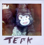 Portroids: Portroid of Terk