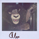 Portroids: Portroid of Alex the Lion